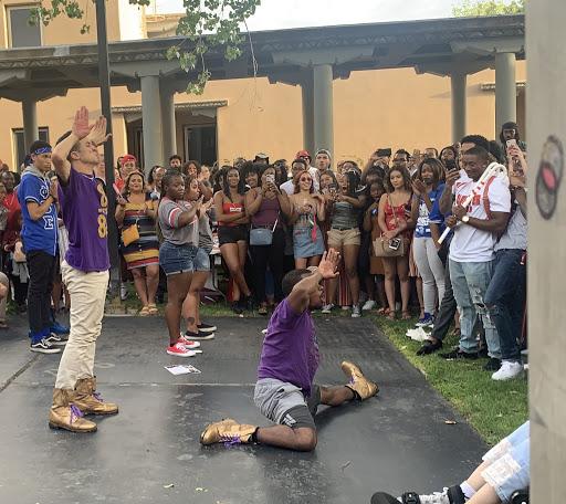 Black sororities and fraternities celebrate unity