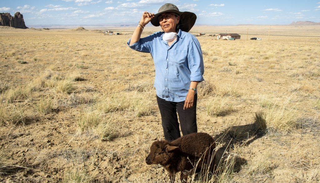 native american woman in field with dog